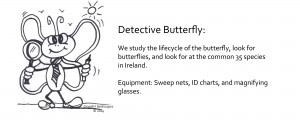 Graceful-Landscape-Helpers_Detective_Butterfly